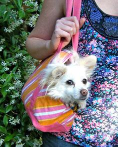 Upcycled Doggie Tote Tutorial
