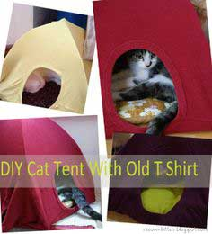 Easy 3 Steps to DIY cat tent with your old T shirts