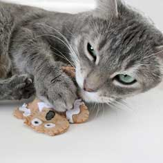 Distressed Gingerbread Man Cat Toys