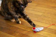 DIY: A House Mouse For Your Cat Friend