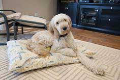 MAKE A DOG BED SLIP COVER IN A FEW EASY STEPS