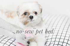 no-sew-pet-bed