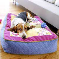 Lucky Dog! Wrap Pillow