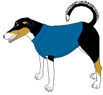 photo about Free Printable Sewing Patterns for Dog Clothes titled 84 Canine Dresses Designs - Cost-free Pet Dresses Tutorials